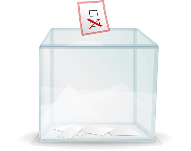 Гласуване, демокрация